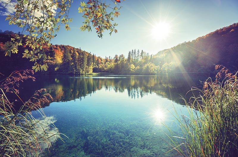 Rekultivierung Natur See